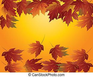 Maple Laub im Herbst