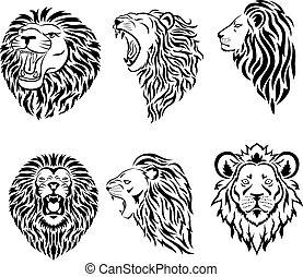 maskottchen, logo, groß, gesicht, satz, löwe