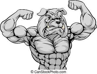 maskottchen, mittel, bulldogge, sport