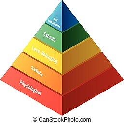 maslow, fünf, niveaus, pyramide, hierarchie, bedürfnisse
