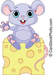 Maus auf Käse