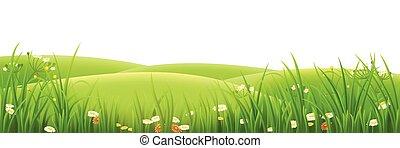 Meadow, grünes Gras und Blumen.