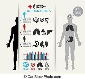 Medical Infographic Design Vorlage / kann für Infographics / horizontale Schnittlinien / Grafik- oder Website-Layout Vektor verwendet werden.