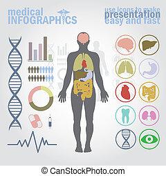 medizin, infographics