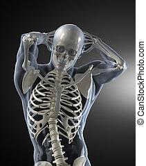 Medizinischer Scan des menschlichen Körpers