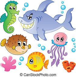 Meeresfische und Tiersammlung vier