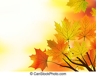 Mehrfarbiger Herbstahorn hinterlässt Hintergrund.