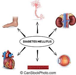 mellitus, zuckerkrankheit