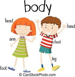 Menschliche Körperteile Diagramm.