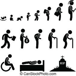 Menschliche Lebens-Baby-Schülerin alt