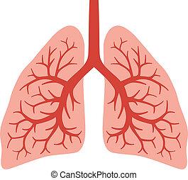 Menschliche Lungen (Brüllsystem)