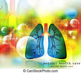 Menschliche Lungen pulmonäres System.