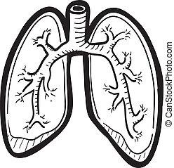 Menschliche Lungenzeichnung