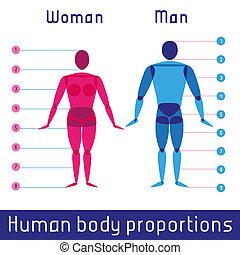 menschlicher körper