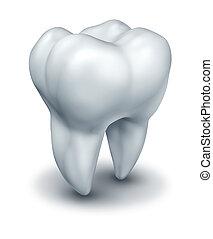 Menschlicher Zahn.