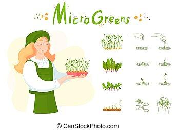 microgreen, m�dchen, microgreen., sprießt