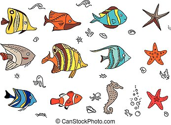 Mit Korallenfischen.