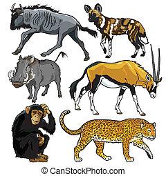 Mit Tieren von Afrika.
