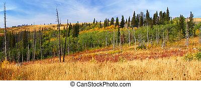 Montana Herbstszene