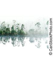 Morgen im Taiga-Wald. Nebel auf der Wasseroberfläche. Tranquil See.