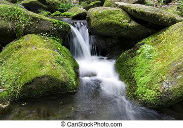 Mossy Wasserfall.