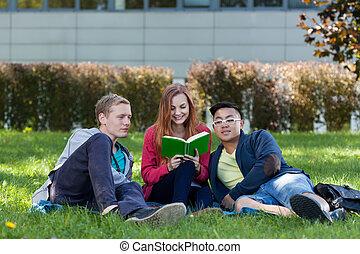 Multi-ethnische Studenten lesen Buch.