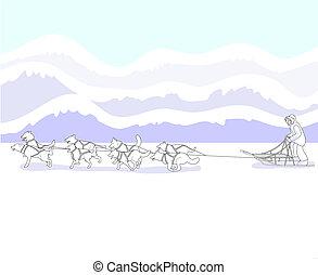 musher, hund sled, mannschaft