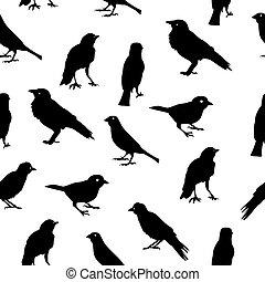 muster, seamless, illustratio, silhouetten, vektor, hintergrund, vögel