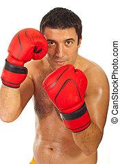 Näher ran an Boxer