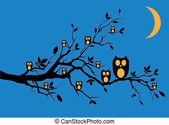 Nachteulen auf Baum, Vektor