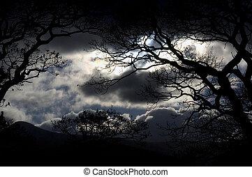 Nachthimmel am Lake District