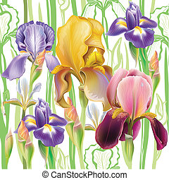 Nahtlose Muster mit Irisblumen.