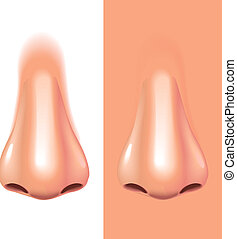 Nase isoliert auf weiße photorealistische Vektorgrafik.