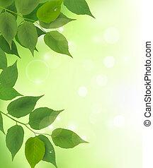 Natürlicher Hintergrund mit frischen grünen Blättern
