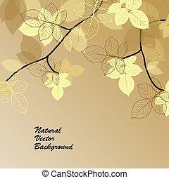Natürlicher Hintergrund mit gelben Blättern.