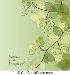 Natürlicher Hintergrund mit grünen Blättern.