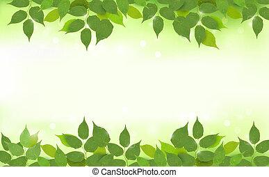 Natürlicher Hintergrund mit grünen Blättern