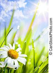 Natürlicher Sommer Hintergrund mit Gänseblümchenblumen im Gras