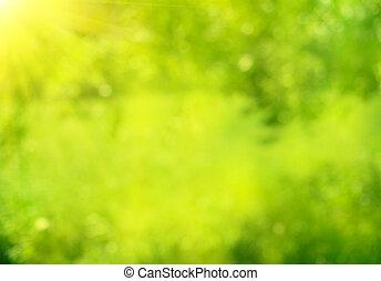Natur abstrakte grüne Sommerbokeh Hintergrund.