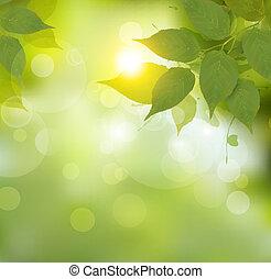 Natur Hintergrund mit grünen Frühlingsblättern. Vector Illustration.