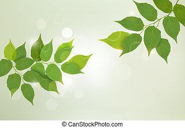 Natur Hintergrund mit grünen frischen Blättern . Vector Illustration.