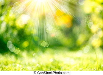 Natur verschwommener Hintergrund mit Sonnenstrahlen.