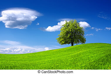 Naturgrüne Landschaft.