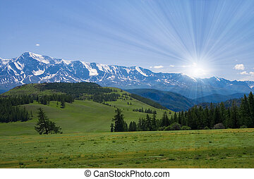 Naturlandschaft, Wiese und Berge, Tierwelt von Altay