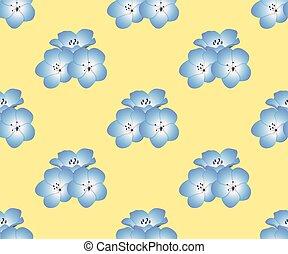 Nemophila Baby blaue Augen blühen auf gelbem Hintergrund