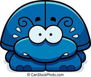 Nervöses kleines Käferchen.