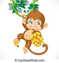 Niedlicher Babyaffen mit Bananen, isoliert auf weißem Hintergrund.
