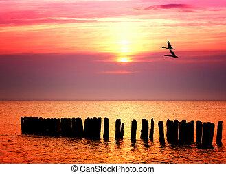 Ocean Sonnenuntergang