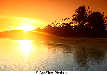 Ocean Sunris