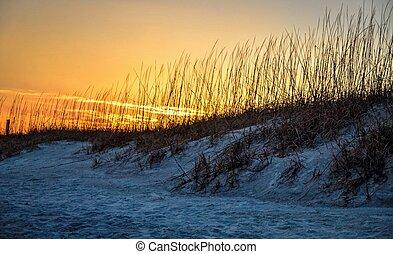 Ocean Sunrise.
